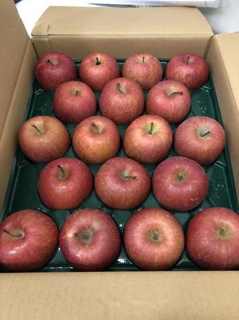 教職員組合からのリンゴ.jpg